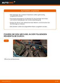 Wie der Wechsel durchführt wird: Domlager Renault Kangoo kc01 D 65 1.9 1.4 1.5 dCi tauschen