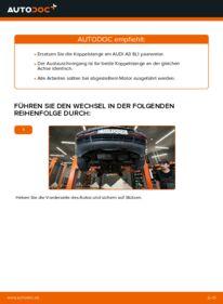 Wie der Wechsel durchführt wird: Koppelstange Audi A3 8l1 1.9 TDI 1.8 T 1.6 tauschen