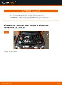 Wie der Wechsel durchführt wird: Zündkerzen Audi A3 8l1 1.9 TDI 1.8 T 1.6 tauschen