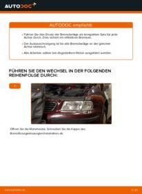 Wie der Wechsel durchführt wird: Bremsbeläge Audi A3 8l1 1.9 TDI 1.8 T 1.6 tauschen