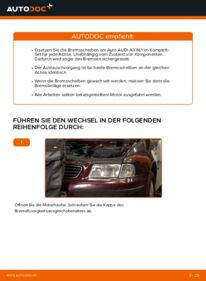 Wie der Austausch bewerkstelligt wird: Bremsscheiben beim 1.9 TDI Audi A3 8l1