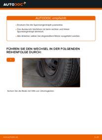 Wie der Wechsel durchführt wird: Spurstangenkopf Opel Corsa C 1.2 (F08, F68) 1.0 (F08, F68) 1.3 CDTI (F08, F68) tauschen