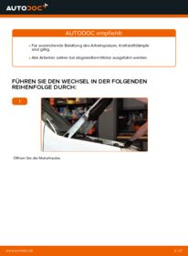 Wie der Wechsel durchführt wird: Kraftstofffilter Fiat Doblo Cargo 1.9 JTD 1.3 D Multijet 1.9 D tauschen