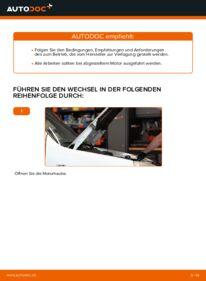 Wie der Wechsel durchführt wird: Luftfilter Fiat Doblo Cargo 1.9 JTD 1.3 D Multijet 1.9 D tauschen