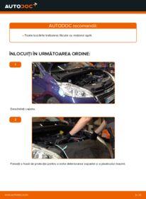 Cum să efectuați înlocuirea: Curea transmisie cu caneluri la 1.4 HDi Peugeot 208 1