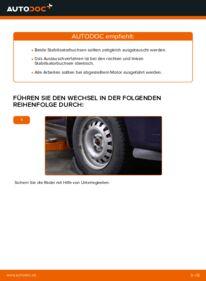 Wie der Wechsel durchführt wird: Stabigummis Opel Astra g f48 1.6 16V (F08, F48) 1.6 (F08, F48) 1.4 16V (F08, F48) tauschen