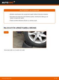Cum să efectuați înlocuirea: Amortizor la 1.4 HDi Peugeot 208 1