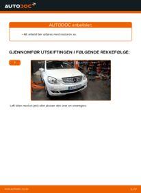 Slik bytter du Kileribberem på B 180 CDI 2.0 (245.207) Mercedes W245