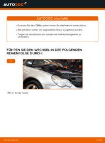 Wie der Wechsel durchführt wird: Ölfilter Mercedes W203 C 220 CDI 2.2 (203.006) C 180 1.8 Kompressor (203.046) C 220 CDI 2.2 (203.008) tauschen