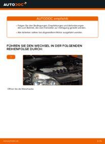 Wie der Wechsel durchführt wird: Luftfilter Renault Clio 2 1.2 1.2 16V 1.5 dCi tauschen