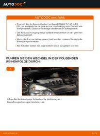 Wie der Wechsel durchführt wird: Bremsscheiben Renault Clio 2 1.2 1.2 16V 1.5 dCi tauschen