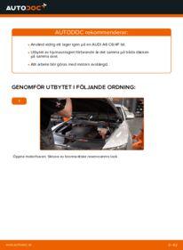 Så byter du Hjullager på 3.0 TDI quattro Audi A6 4f2