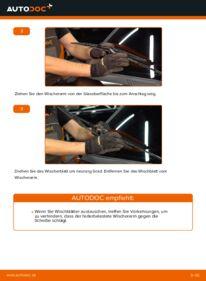 Wie der Wechsel durchführt wird: Scheibenwischer Renault Clio 2 1.2 1.2 16V 1.5 dCi tauschen