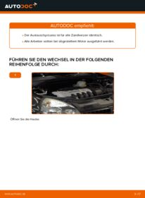 Wie der Wechsel durchführt wird: Zündkerzen Renault Clio 2 1.2 1.2 16V 1.5 dCi tauschen