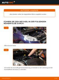 Wie der Austausch bewerkstelligt wird: Keilrippenriemen beim 1.4 HDi Peugeot 208 1
