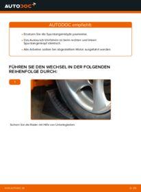 Wie der Wechsel durchführt wird: Spurstangenkopf Peugeot 206 cc 2d 1.6 16V 2.0 S16 1.6 HDi 110 tauschen