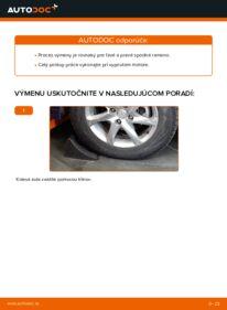 Ako vykonať výmenu: Rameno Zavesenia Kolies na 2.2 dCi 4x4 Nissan X Trail t30