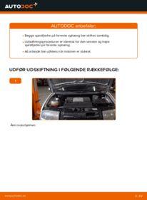 Hvordan man udfører udskiftning af: Fjeder på 1.4 16V Skoda Fabia 6y5