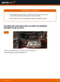 Wie der Austausch bewerkstelligt wird: Bremssattel beim 1.9 TDI Audi A3 8l1