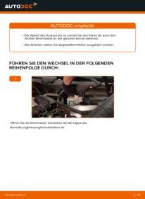 Wie der Austausch bewerkstelligt wird: Bremssattel beim C 220 CDI 2.2 (203.006) Mercedes W203