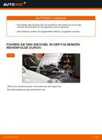 Wie der Wechsel durchführt wird: Bremssattel VW Caddy 3 Kombi 1.9 TDI 1.6 TDI 2.0 EcoFuel tauschen