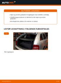 Hvordan man udfører udskiftning af: Bagklapsdæmper på 1.4 16V Skoda Fabia 6y5