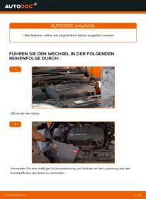 Wie der Wechsel durchführt wird: Keilrippenriemen Opel Corsa C 1.2 (F08, F68) 1.0 (F08, F68) 1.3 CDTI (F08, F68) tauschen