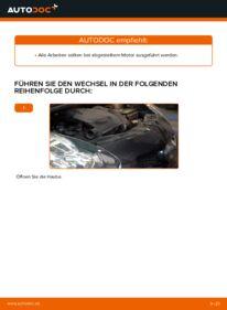 Wie der Wechsel durchführt wird: Keilrippenriemen Toyota Aygo ab1 1 1.4 HDi 1.0 GPL (KGB10_) tauschen