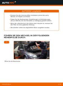 Wie der Austausch bewerkstelligt wird: Innenraumfilter beim 1.9 dCi Renault Scenic 2