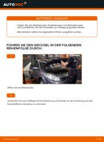 Wie der Wechsel durchführt wird: Luftfilter Renault Scenic 2 1.9 dCi 1.5 dCi 1.6 tauschen