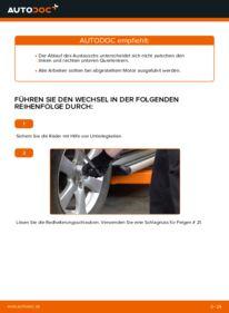 Wie der Wechsel durchführt wird: Querlenker Toyota RAV4 III 2.2 D 4WD (ALA30_) 2.0 4WD (ACA30_) 2.2 D (ALA35_) tauschen
