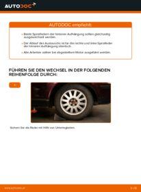 Wie der Austausch bewerkstelligt wird: Federn beim 1.9 TDI Audi A3 8l1