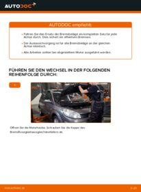 Wie der Wechsel durchführt wird: Bremsbeläge Renault Scenic 2 1.9 dCi 1.5 dCi 1.6 tauschen