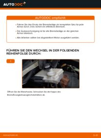 Wie der Wechsel durchführt wird: Bremsbeläge Citroen Xsara Picasso 2.0 HDi 1.6 HDi 1.8 16V tauschen