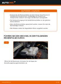 Wie der Wechsel durchführt wird: Bremsscheiben Citroen Xsara Picasso 2.0 HDi 1.6 HDi 1.8 16V tauschen