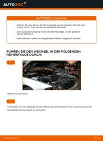 Wie der Ersatz vollführt wird: Bremsbeläge am 523i 2.5 BMW E39