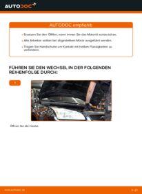 Wie der Wechsel durchführt wird: Ölfilter Ford Focus mk2 Limousine 1.6 TDCi 1.8 TDCi 1.6 tauschen