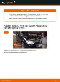 Wie der Wechsel durchführt wird: Bremssattel Touran 1t1 1t2 1.9 TDI 2.0 TDI 16V 2.0 TDI tauschen