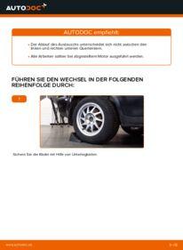 Wie der Wechsel durchführt wird: Querlenker Ford Focus mk2 Limousine 1.6 TDCi 1.8 TDCi 1.6 tauschen