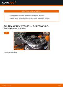 Wie der Wechsel durchführt wird: Zündkerzen BMW E92 335i 3.0 320d 2.0 335d 3.0 tauschen