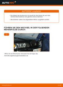 Wie der Ersatz vollführt wird: Bremssattel am 523i 2.5 BMW E39