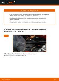 Wie der Wechsel durchführt wird: Bremsbeläge PEUGEOT 107 1.0 1.4 HDi 1.0 tauschen