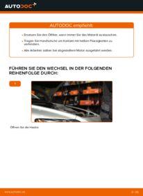 Wie der Wechsel durchführt wird: Ölfilter Volvo v50 mw 2.0 D 1.6 D 1.6 D2 tauschen