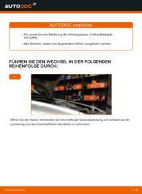 Wie der Wechsel durchführt wird: Kraftstofffilter Volvo v50 mw 2.0 D 1.6 D 1.6 D2 tauschen
