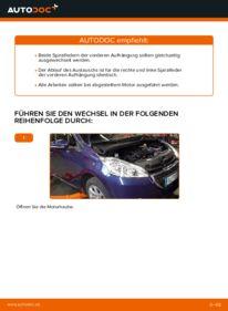 Wie der Wechsel durchführt wird: Federn Peugeot 208 1 1.4 HDi 1.2 1.6 HDi tauschen