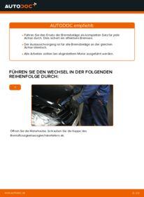 Wie der Wechsel durchführt wird: Bremsbeläge Mercedes W169 A 180 CDI 2.0 (169.007, 169.307) A 150 1.5 (169.031, 169.331) A 170 1.7 (169.032, 169.332) tauschen