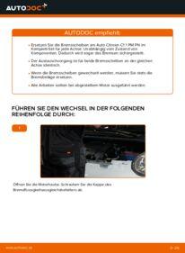 Wie der Wechsel durchführt wird: Bremsscheiben CITROËN C1 (PM_, PN_) 1.0 1.4 HDi 1.0 tauschen
