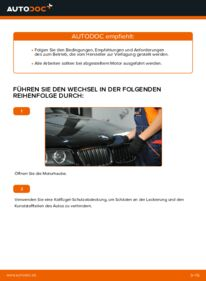 Wie der Wechsel durchführt wird: Luftfilter BMW X3 E83 2.0 d 3.0 d xDrive20d 2.0 tauschen