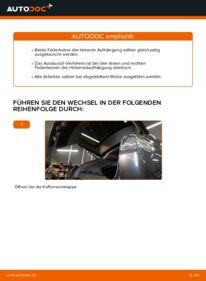 Wie der Wechsel durchführt wird: Stoßdämpfer Lexus RX XU30 3.3 400h AWD 3.0 3.3 400h tauschen