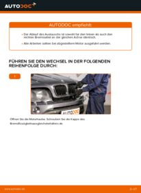 Wie der Wechsel durchführt wird: Bremssattel BMW E53 3.0 d 3.0 i 4.4 i tauschen